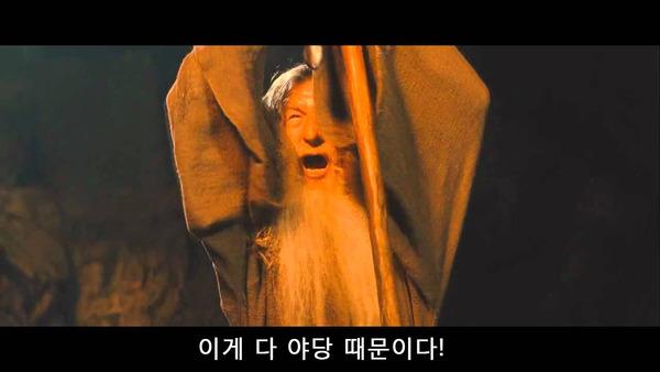 간달프 마법사 반지의 제왕 야당때문이다 이게 다 야당 때문이다 정치 새누리 자유당 바른정당 쓰레기 패러디